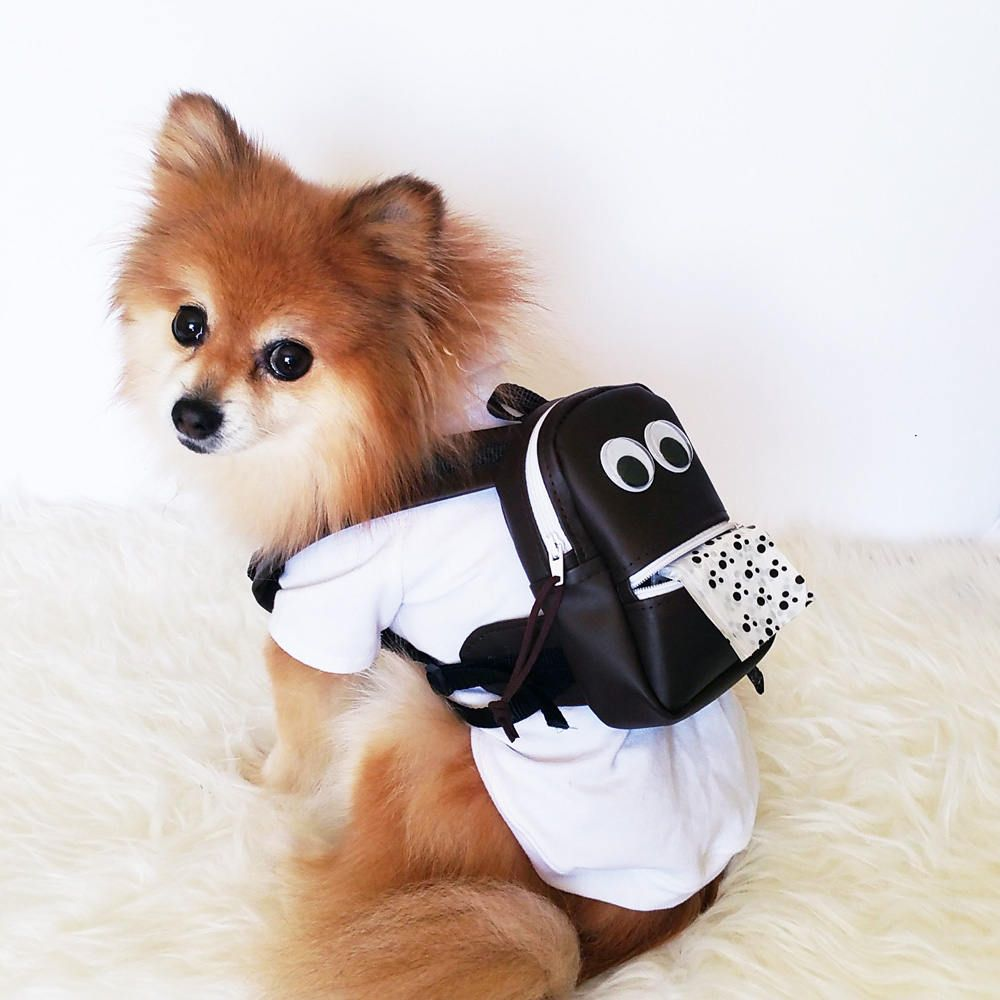 Cutest Leather Backpack For Dogs And Cats You Wont Be Able To