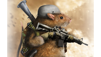 Weaponized Gerbils and Cloud Security | Funny rats, Good pranks ...