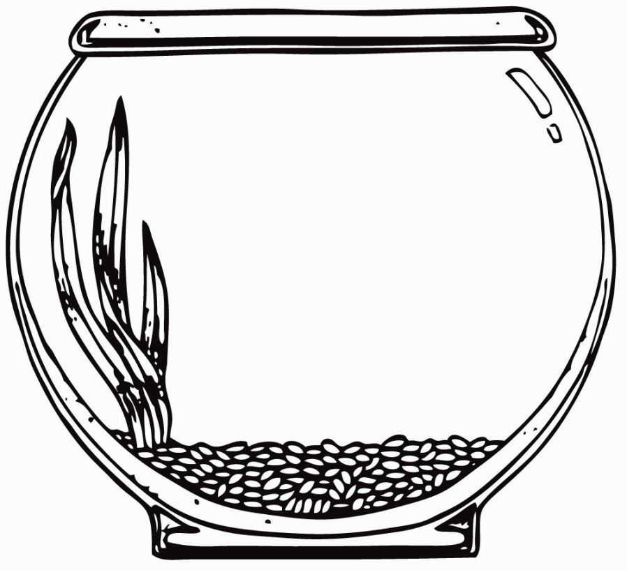 Image for Aquarium Coloring Page