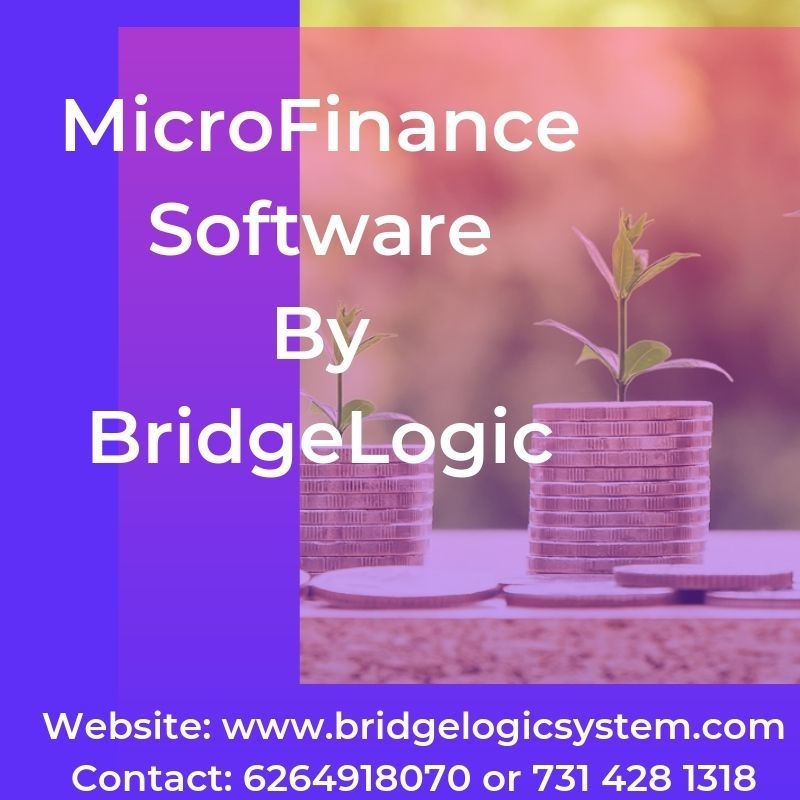 Microfinance software provides you the smart banking