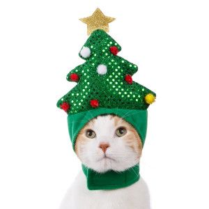 Whisker City Pet Holiday Christmas Tree Cat Hat Clothes Costumes Petsmart Pet Holiday Christmas Animals Christmas Cats
