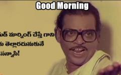 Good Morning Funny Images Telugu Good Morning Funny Funny Images Good Morning Images Download