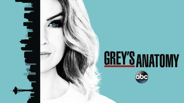 Grey's Anatomy - Episode 13.01 - Undo - Press Release Promotional Photos Promo  Sneak Peeks Updated