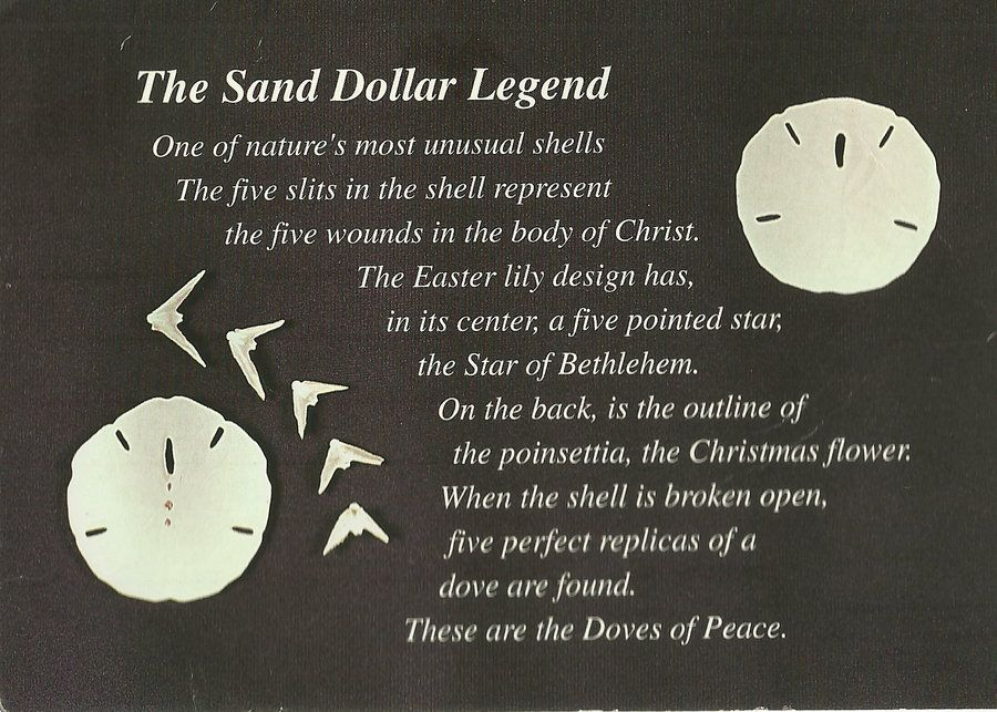 Agile image intended for legend of the sand dollar poem printable
