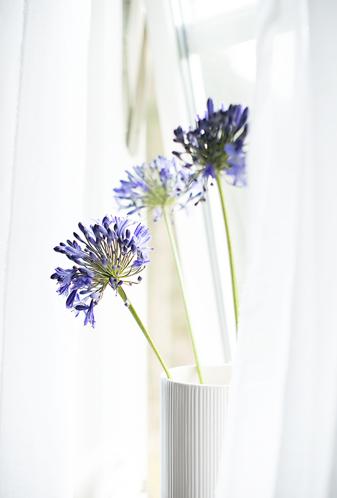 simplicity - a simple arrangement