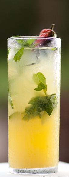 #lemon #basil #jalapeno #tequila #cocktail #drink