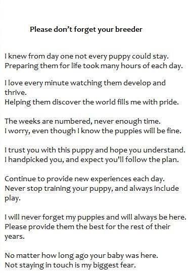 Please DonT Forget Your Breeder This Explains Exactly How I Feel