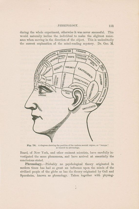 Antique Phrenology Head Illustration Chart 1897 Illustrated Etsy Phrenology Antique Books Illustration