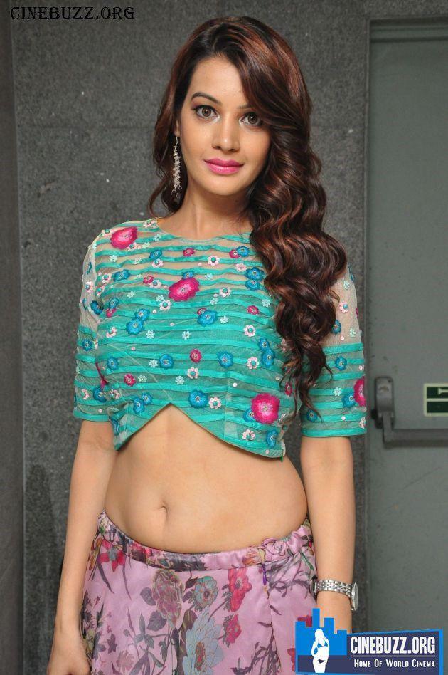 Deeksha Panth Hot And Sexy Photos Bollywood Tollywood Kollywood Sexy Hot Actress Tollywood Pollywood