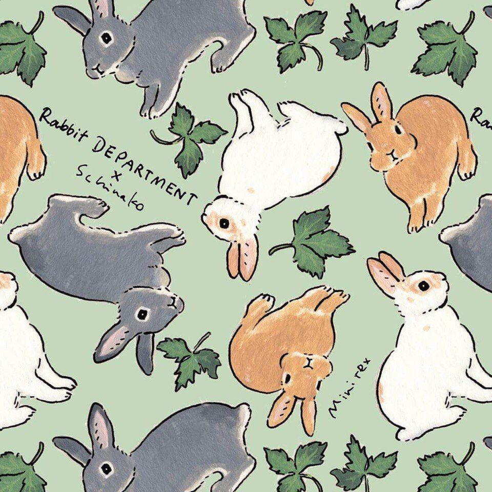 картинка найди кролика стильных женских