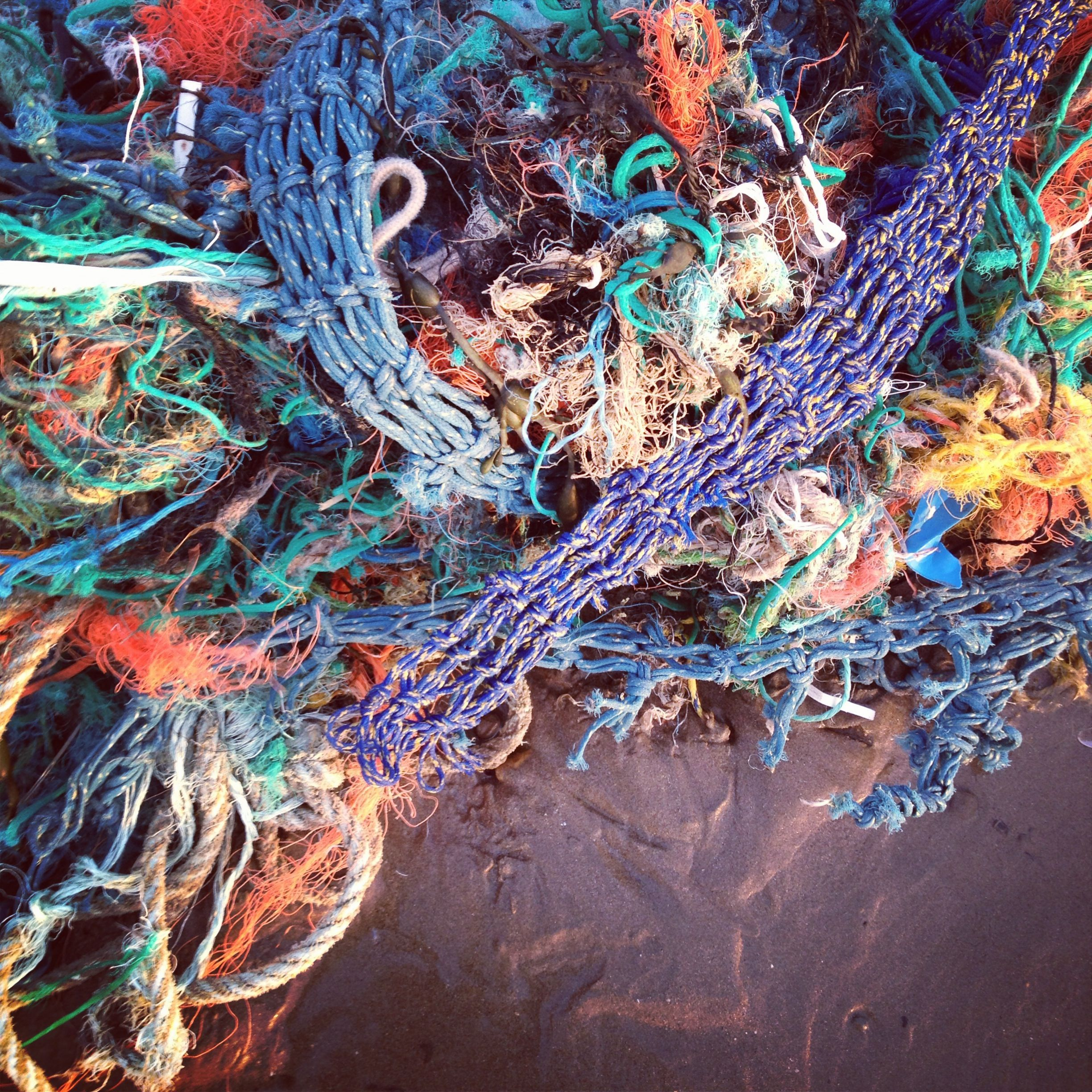 What Are Ghost Nets?   Olive Ridley Project