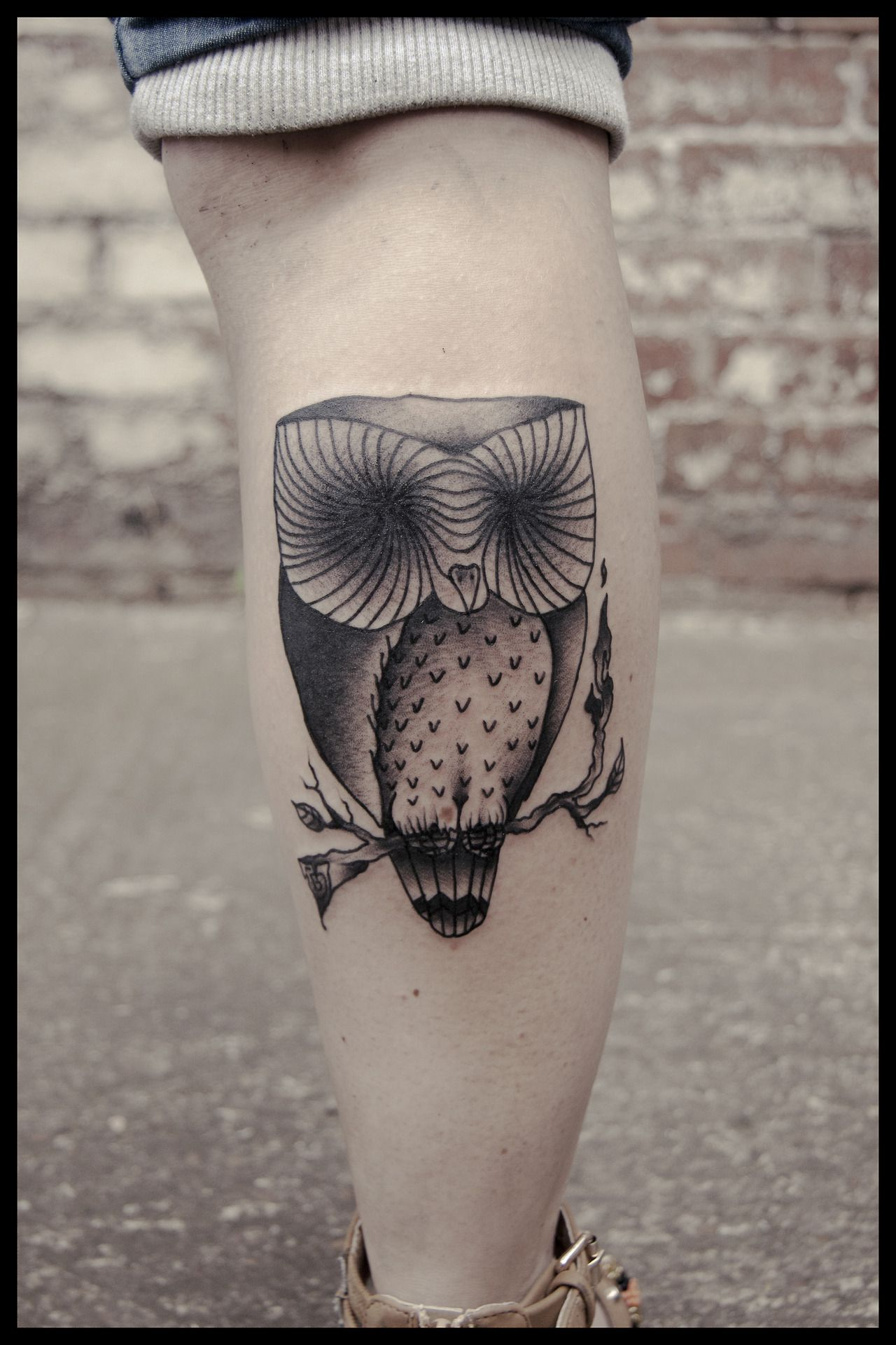 Owl tattoo. I love it!