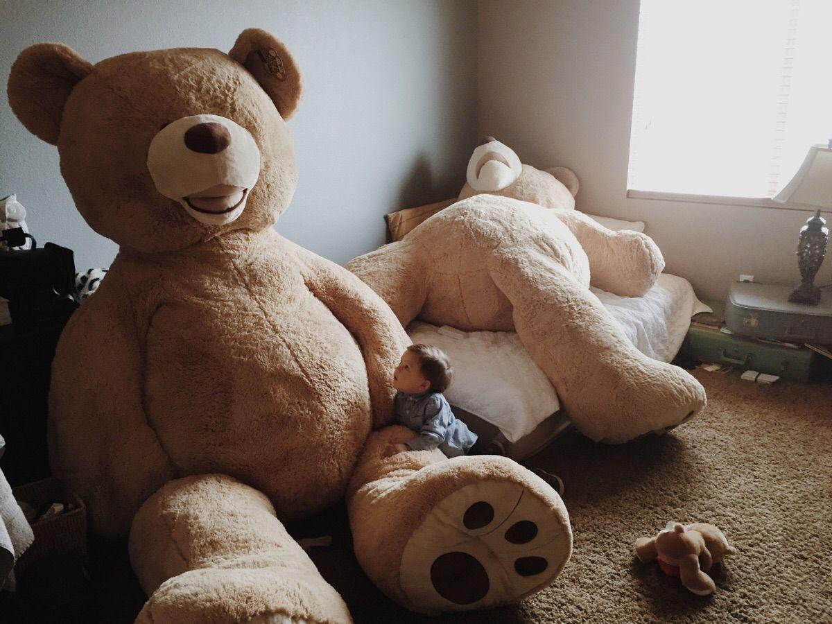 Big ass teddy bears