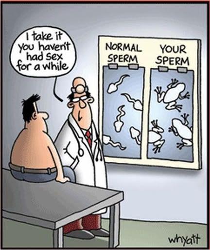 Pity, far side sperm