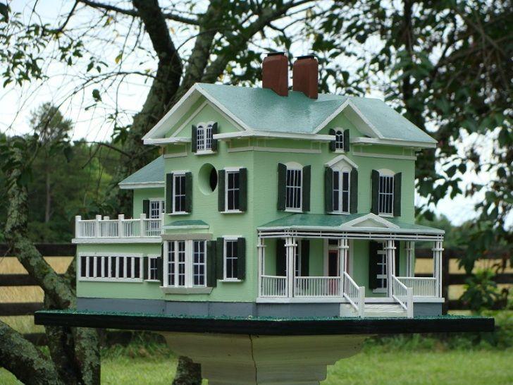 bird house plans building bird houses and purple martin bird