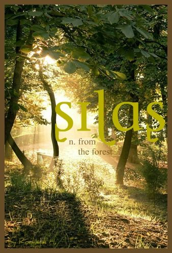 Baby Boy Name Silas Meaning From The Forest Origin