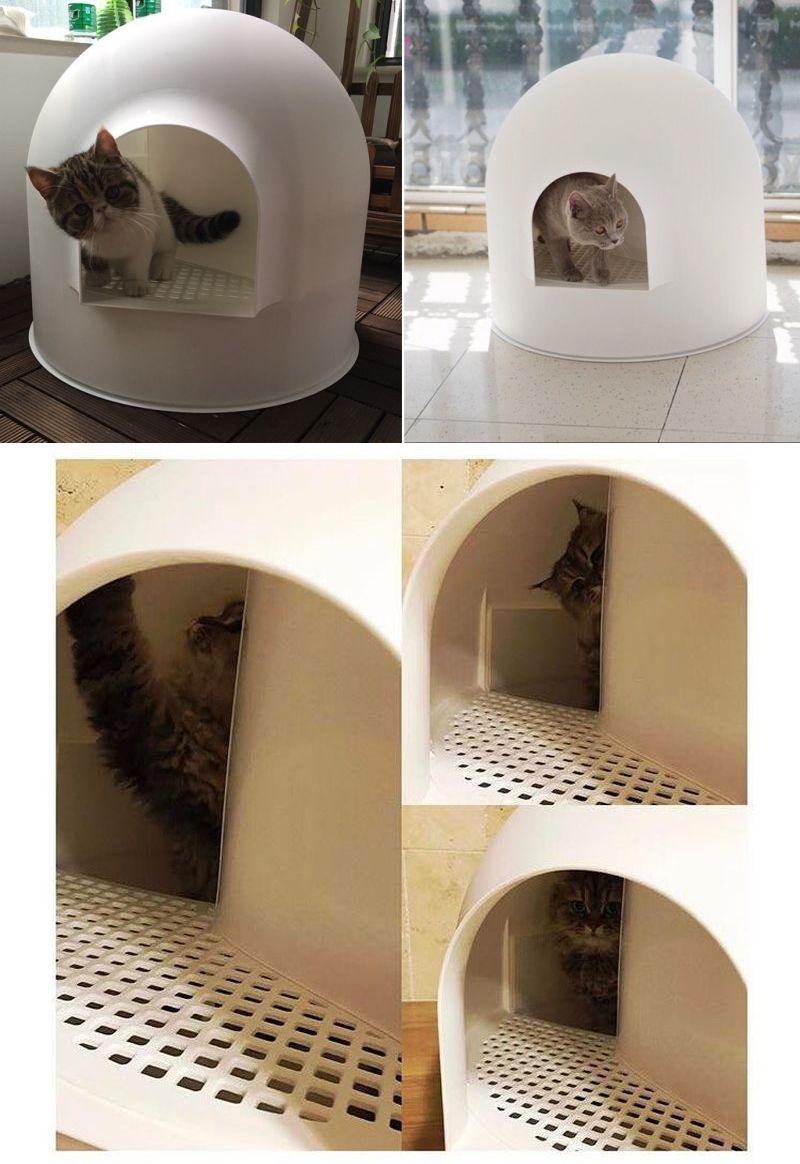 Award Winning Igloo Cat Litter Box By Pidan Studio Litter Box