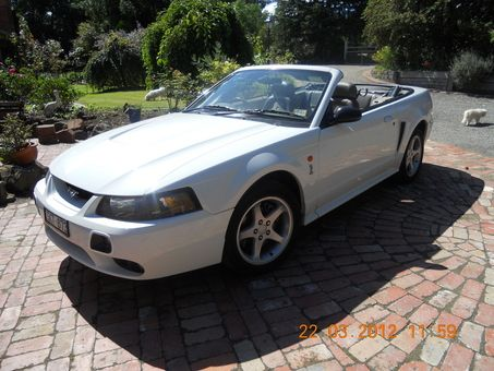 2002 FORD MUSTANG COBRA      Traction Control System      Rear Spoiler      Power front seat Driver      Power Windows      Power Steering      Power Mirrors      Limited Slip Differential      Leather Trim      Engine Immobiliser      Electric Top      Dual Airbag Package      Cruise Control      Central Locking Remote Control      CD with 6 CD Stacker      Anti-lock Braking      Alloy Wheels      Alarm System/Remote Anti Theft      Air Conditioning      Adjustable Steering Wheel  $48000…