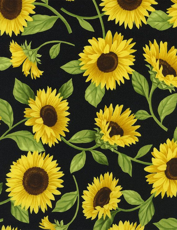 241bee54b90a6 Fleur Sunflowers Allover And Stripe By Timeless Treasures - Allover On  Black Fabric C9830 And Stripe With Daisies C9831