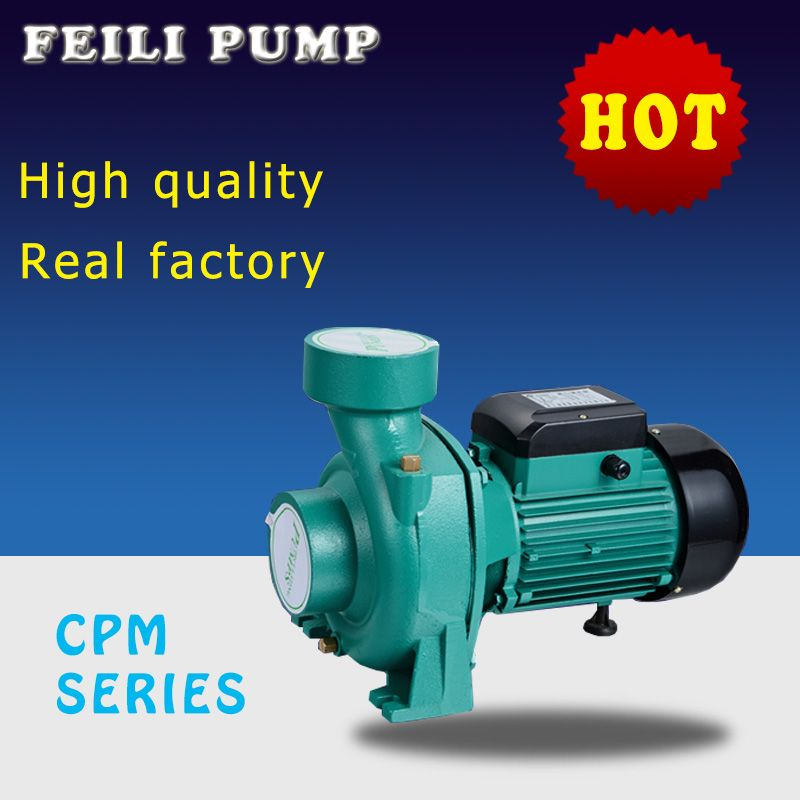 Mini Self Priming Water Pump Beijing Olympic Use Feili Pump