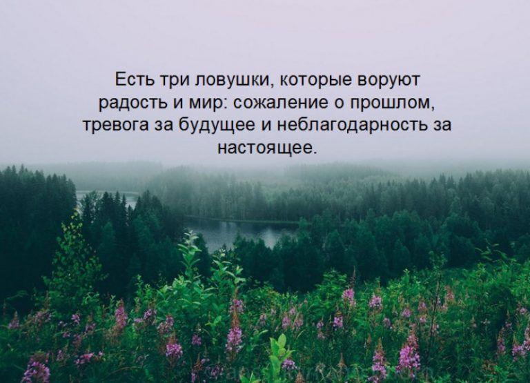 Statusy Pro Zhizn So Smyslom V Kartinkah 46 Foto Naslazhdajtes Yumorom Osho Words Affirmations