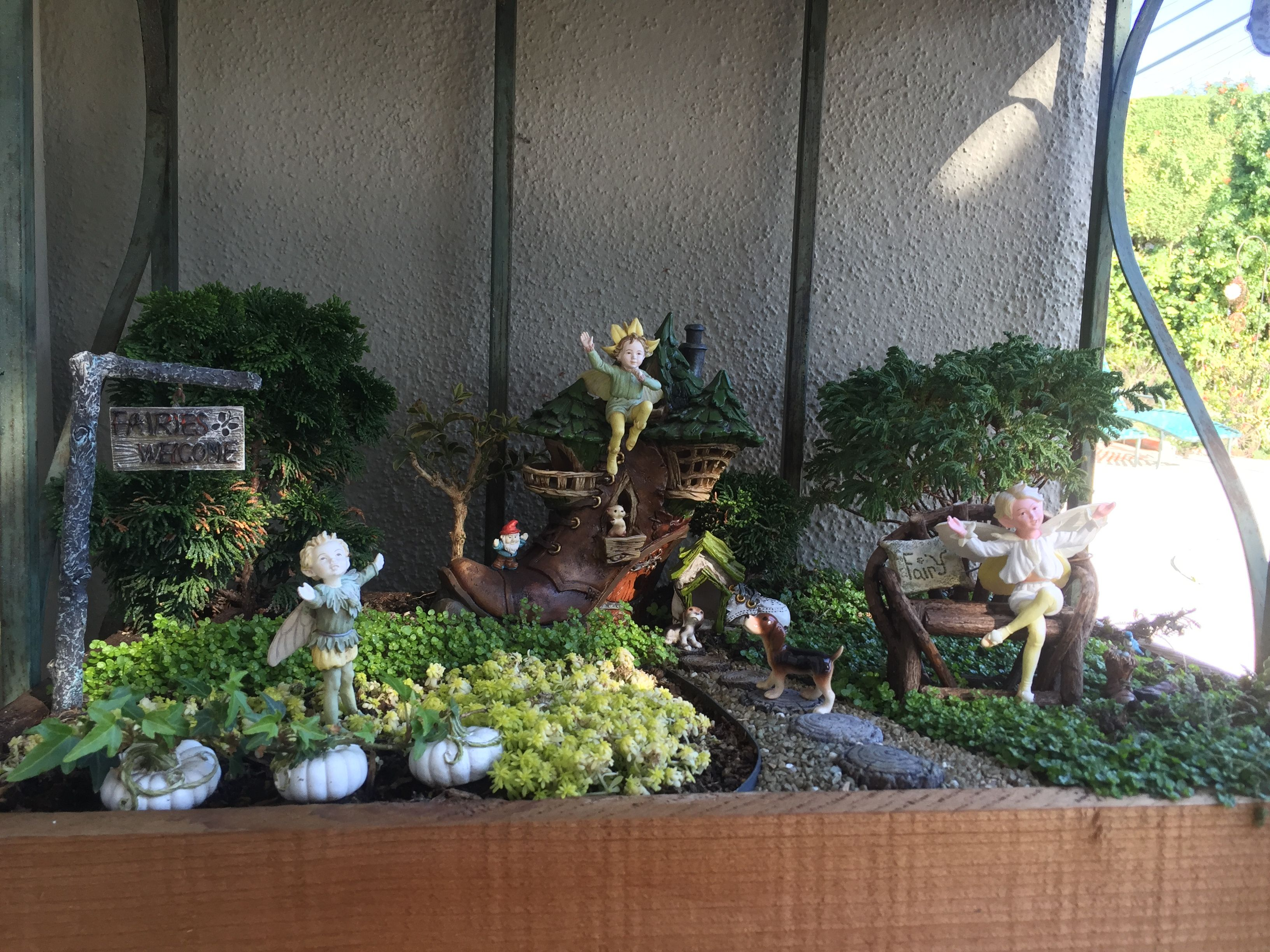 Miniature Fairy Garden   FAIRIES WEAR BOOTS. Three Boy
