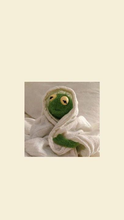 fondos de pantalla para gente extraña  - Kermit