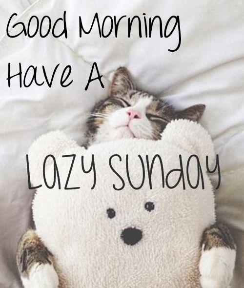 Good Morning Have A Lazy Sunday Good Morning Sunday Sunday Quotes