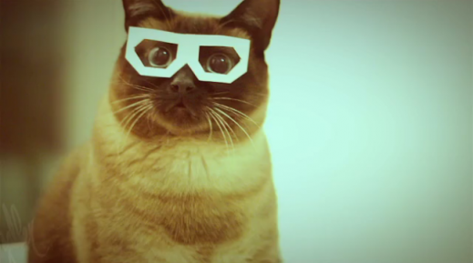 Cats in 3D