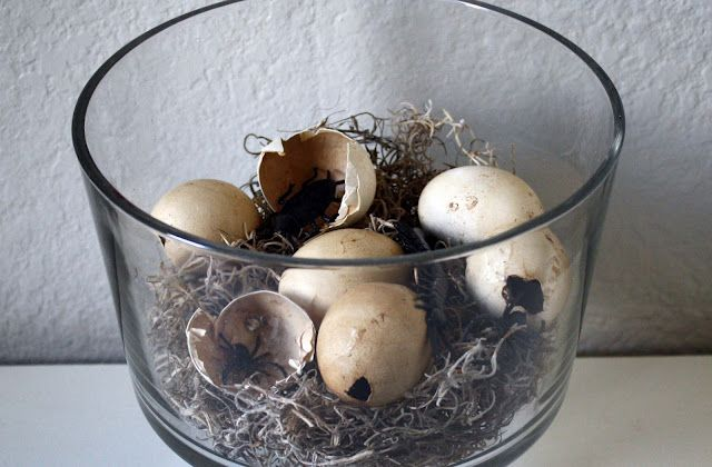rotten eggs- tea dyed shells with plastic bugs