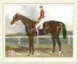 The Baron(1842)Birdcatcher- Echidna By Economist. 4x4 To Waxy & Penolope, 5x5 To Bagot. 10 Starts 6 Wins 1 Second. Won 1845 St Leger S(Eng, Cesarewitch H(Eng), Waterford S(Ire), Kirwan S(Ire), Madrid S(Ire).