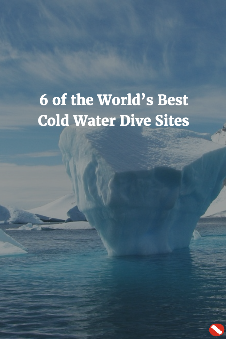 6 Of The World's Best Cold Water DIve Sites
