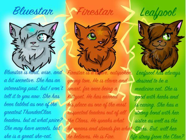 Graystripe Firestar Warriors Disney Com Create Warriors Cats