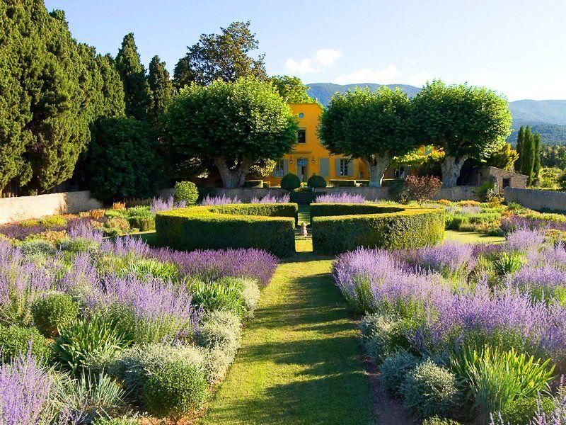 Garden, ideas pation, backyard, diy, vegetable, flower, herb