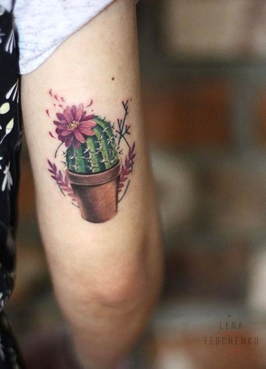 Lena Fedchenko cactus tattoo | Ideas | Cactus tattoo, Tattoos ...