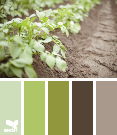 Quilt with sage green and grey colors quilt matters - Colors that go with sage green ...