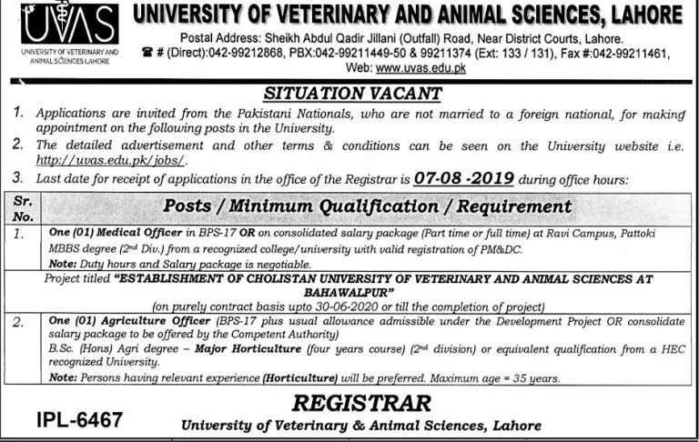Situation Vacant In Uvas Lahore Service Jobs College Job