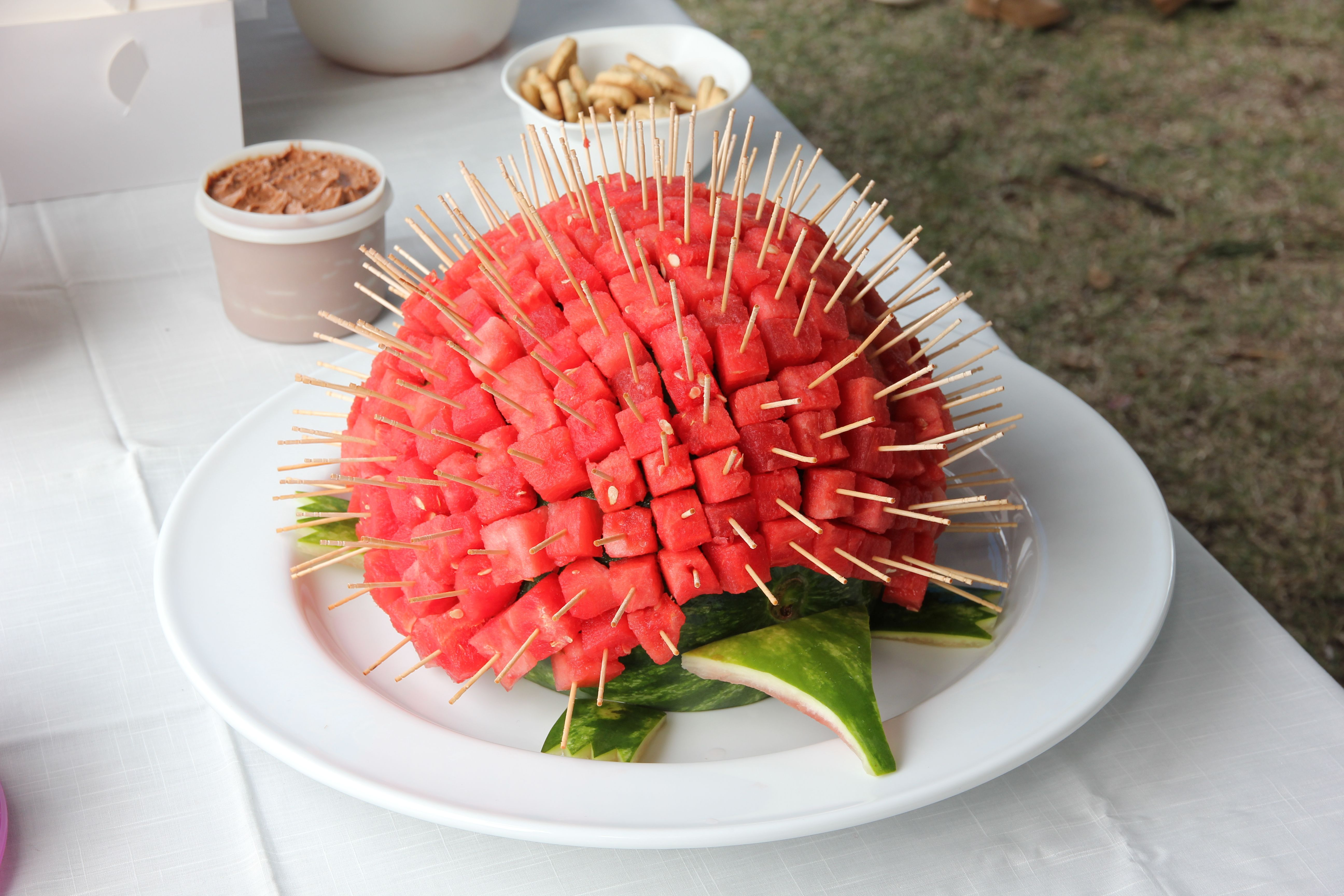 Essen Garnieren Verzieren Dekorieren Watermelon Echidna For Noah's Ark Party | Watermelon