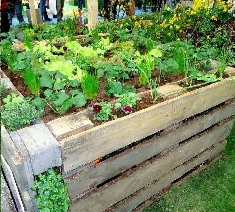 pallet boxed bed - Pallet Garden Bed