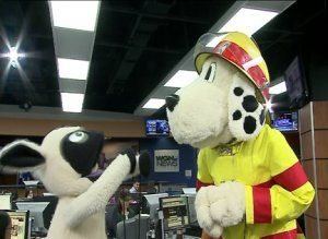 sparky the fire dog robot. frank woolanski \u0026 sparky the fire dog invade hoover\u0027s segment robot x