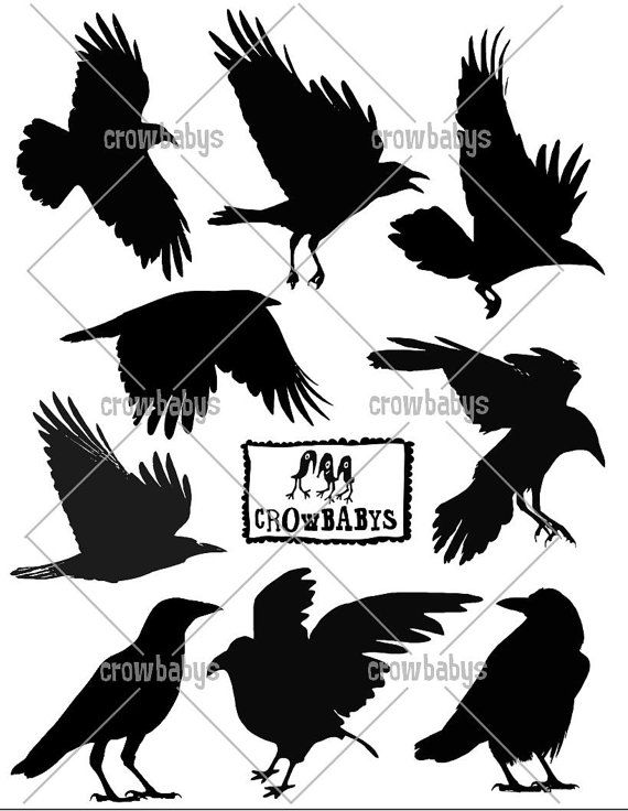 Raven silhouette vinyl decal sticker raven crow birds