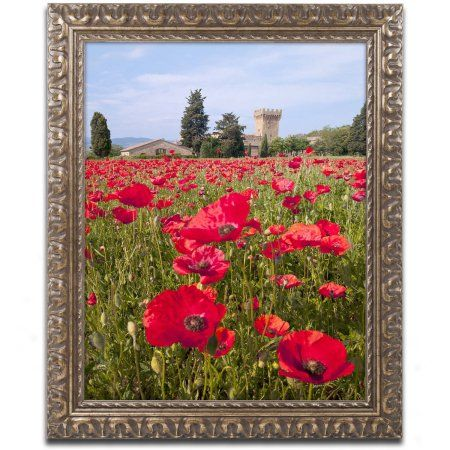 Trademark Fine Art 'Poppies Close' Canvas Art by Michael Blanchette Photography, Gold Ornate Frame, Size: 16 x 20, Assorted