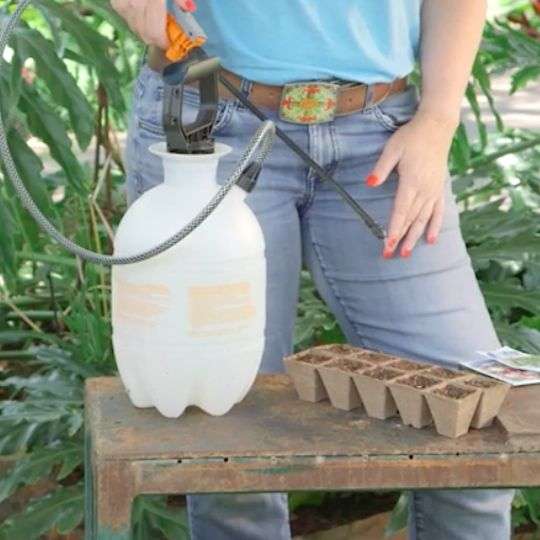 Get Misty With This Elegant Watering Tip.   Garden Tips And Tricks