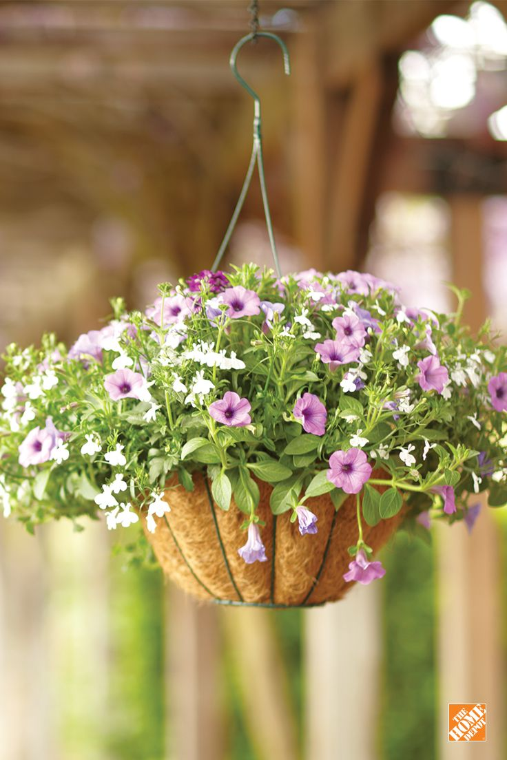 Create A Memorable Mother S Day Gift With Our Coco Hanging Basket Pair It