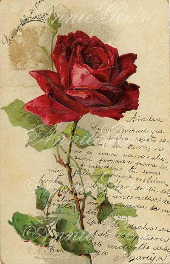 My Dearest Rose by Amalia K on Etsy