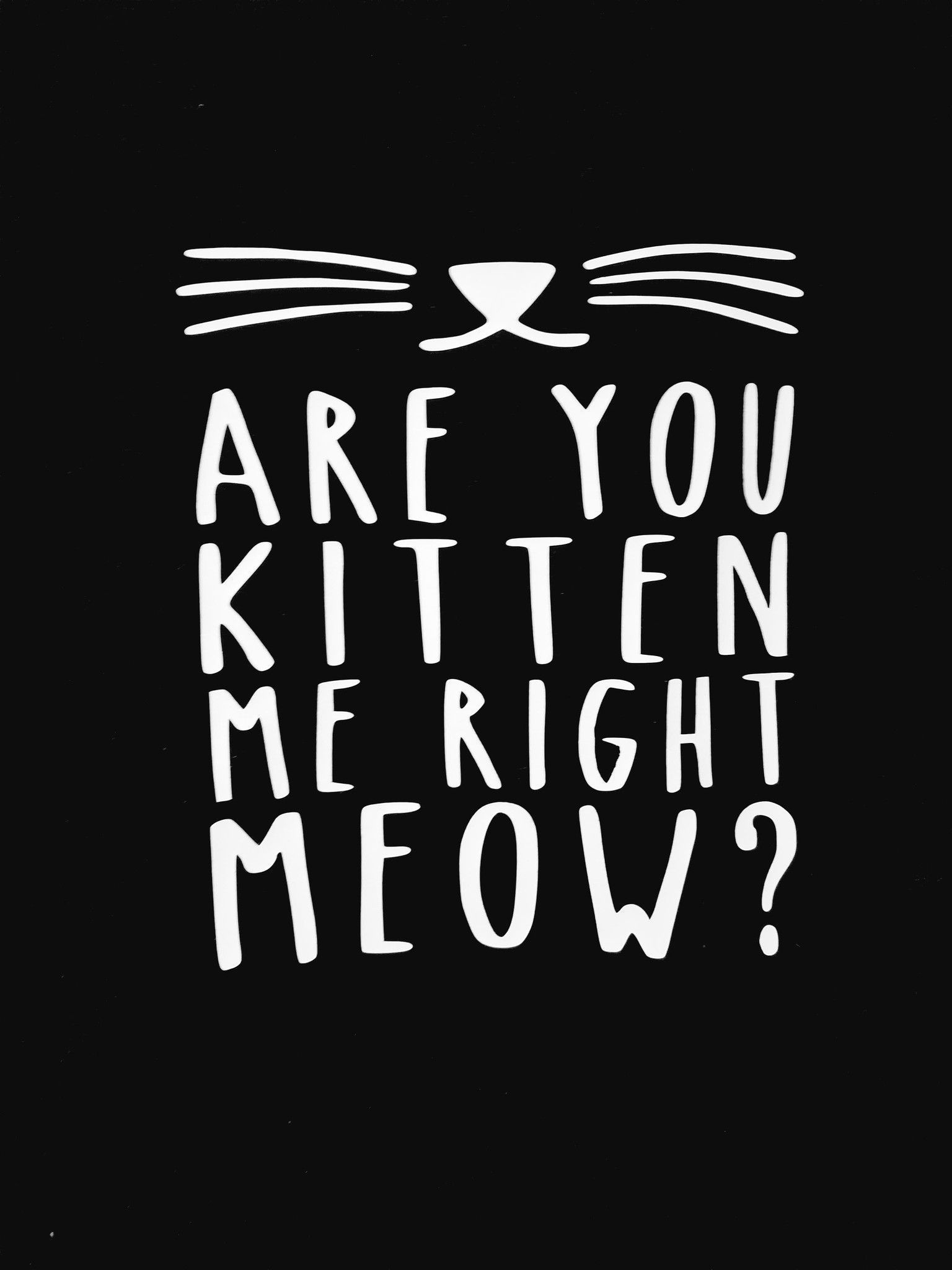 Are You Kitten Me Right Meow Shirt Cat Tshirt Cat Tee Cat Cat Shirt Novelty Shirt Funny Shirts Statement T Cat Shirts Funny Cat Shirts Cat Tshirt Design