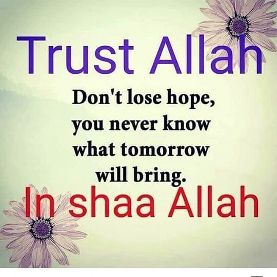 Great 194 Likes, 5 Comments   +919985060296 (@spread_islam_bismillah) On Instagram