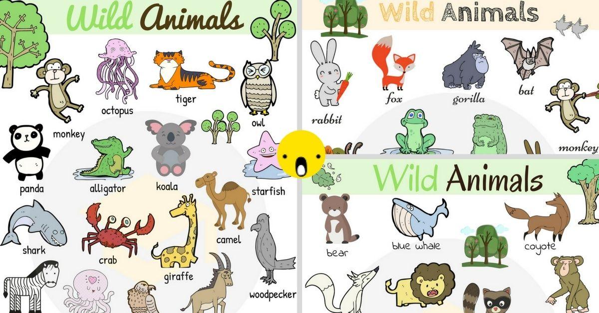 Wild Animals List Of Wild Animal Names In English With Images 7 E S L Wild Animals List Animals Wild Pet Animals List