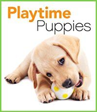 Top 25 Best Puppy Toys For Dogs That Chew A Lot Toy Puppies