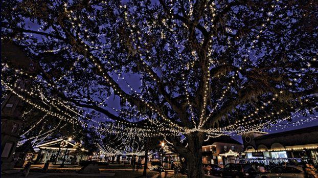 The Mesmerizing Christmas Display In Florida With Over 2 Million Glittering Lights Florida Christmas Orlando Holiday Florida Holiday